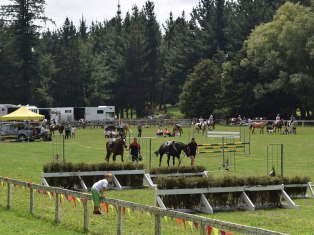 horseevents-4